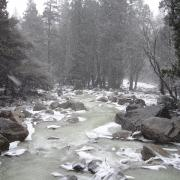Slush in Yosemite Creek