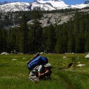 hiker in meadow with snowy peak
