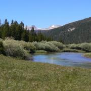 River and meadow