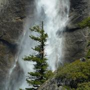 Base of Upper Yosemite Fall