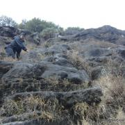 Climbing grassy ledges