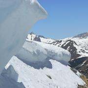 Cornice at top of Ellery Bowl